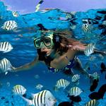 Paquete a Cancún